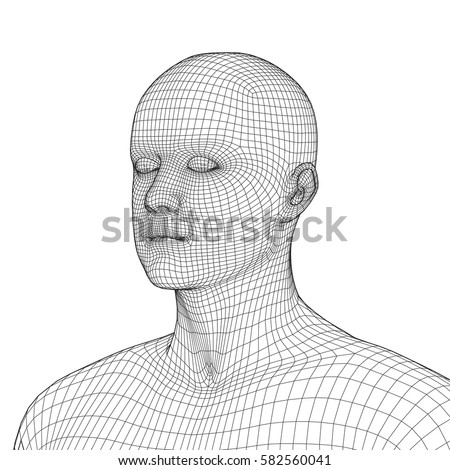 Young Man Face Portrait 3 D Wireframe Stock Photo (Photo, Vector ...