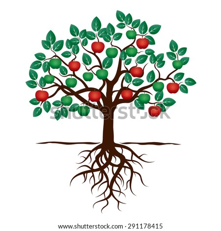 Young Tree with Green Leafs, Roots and Red Apple. Vector Illustration - stock vector