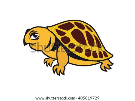 Young turtle vector. Cartoon character turtle. Illustration of a beautiful turtle. Vector turtle on a white background - stock vector