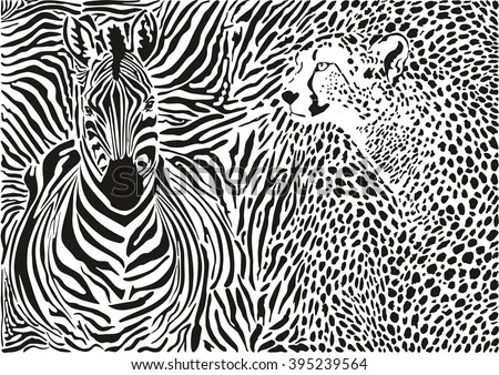Zebra and cheetah and pattern background