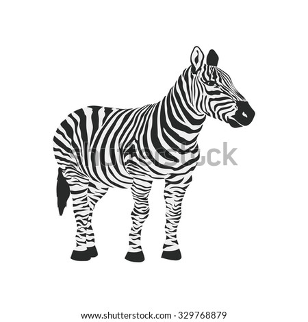 Zebra, animals, wild icon vector image. Suitable for mobile apps, web apps and print media.