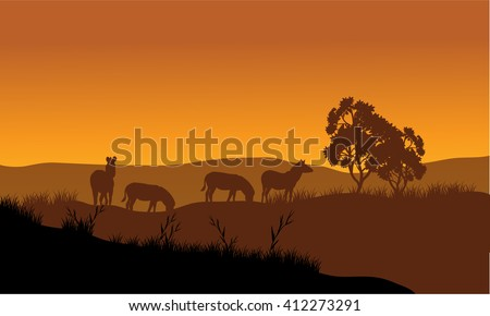 Zebra silhouette in the hills at sunset - stock vector