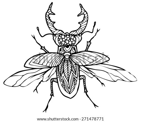 zentangle style insect vector illustration - stock vector