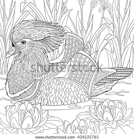 Zentangle stylized cartoon mandarin duck swimming among water lilies flowers. Hand drawn sketch for adult antistress coloring page, T-shirt emblem, logo, tattoo with doodle, zentangle design elements. - stock vector