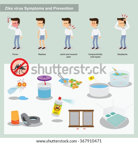 Zika virus from mosquitos symptoms and preventions - stock vector