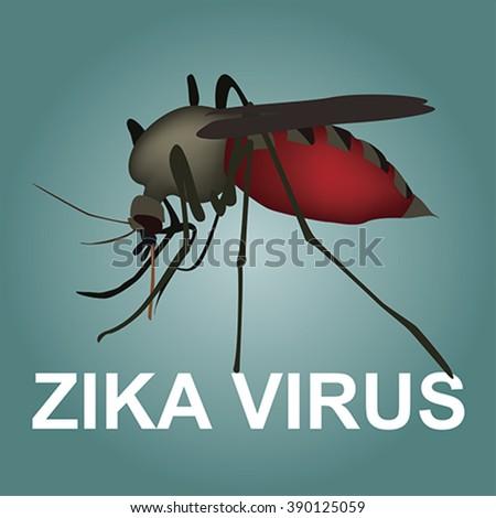 zika virus, vector - stock vector