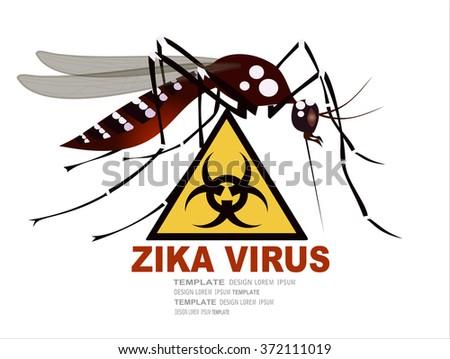 Zika virus warning sign, vector - stock vector